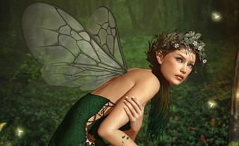 fairy-site