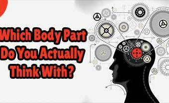 Which Body Part Do You Actually Think With?