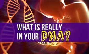 What Is Really In Your DNA?