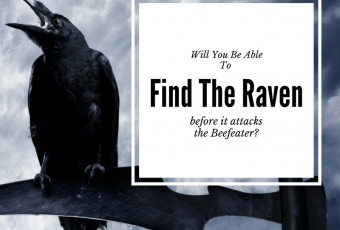 Will YOU Be Able To Find The Raven Before He Attacks The Beefeater?