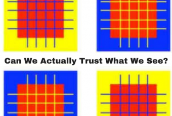 Can We Actually Trust What We See?