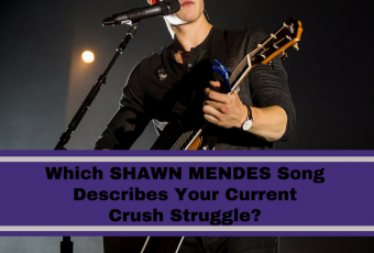 Which Shawn Mendes Song Describes Your Current Crush Struggle?