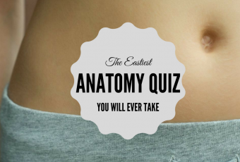 The Easiest Anatomy Quiz You Will Ever Take.