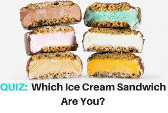 Which Ice Cream Sandwich Are You?