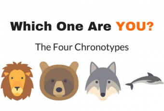 Which Of The Four Chronotypes Are You?