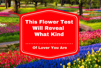 This Flower Test Will Reveal What Kind Of Lover You Are