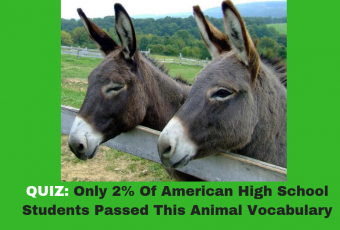 Only 2% Of American High School Students Passed This Animal Vocabulary